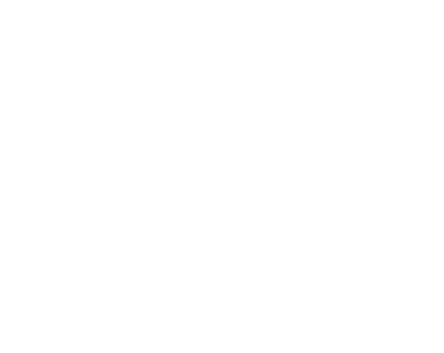 OmniaRing's Ring Logo - a white ring